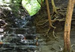 Eternal Flame Trail - Chestnut Ridge Park